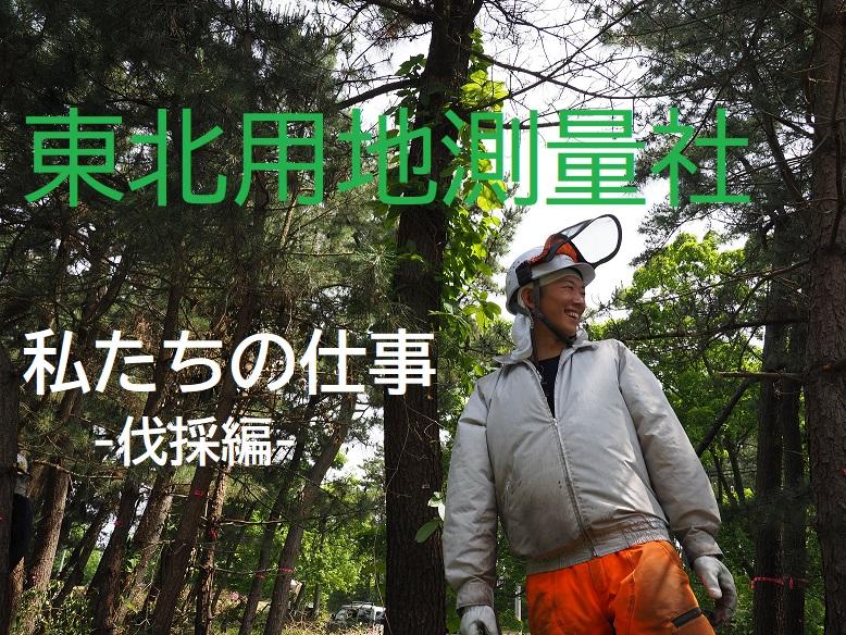 動画サムネイル:株式会社東北用地測量社